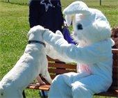Easter Pup-APalooza