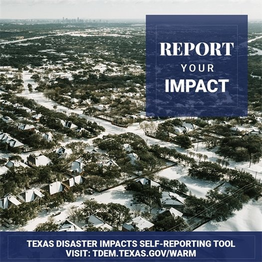 REPORT YOUR IMPACT