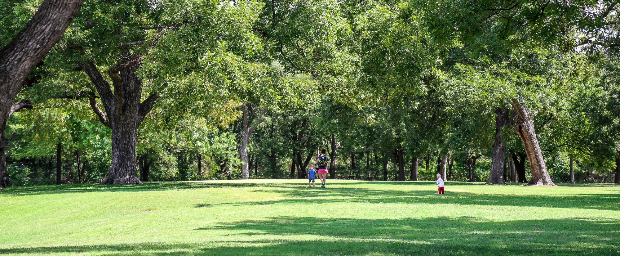 Pecan Grove Park lawn and trees