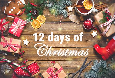 12 days of Christmas graphic with ornaments, dried orange slices and crafts