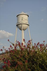 Rowlett tx Water tower
